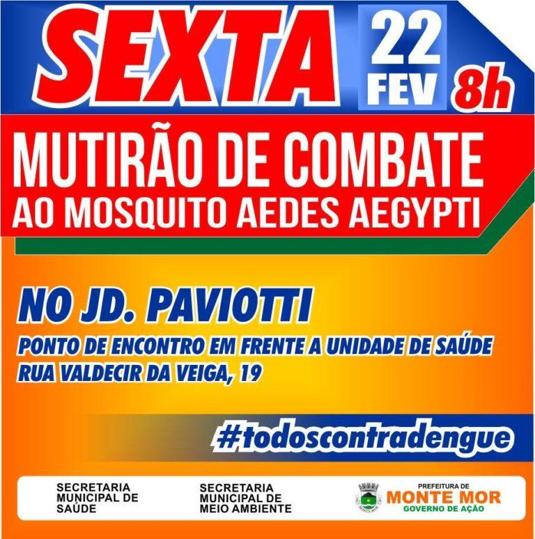 Mutirões de combate ao Aedes aegypti acontece amanhã