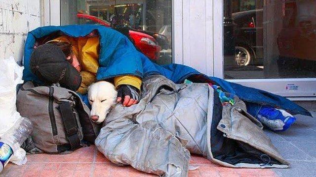 Read more about the article Morador de rua e seu cachorro morrem de frio e são encontrados abraçados
